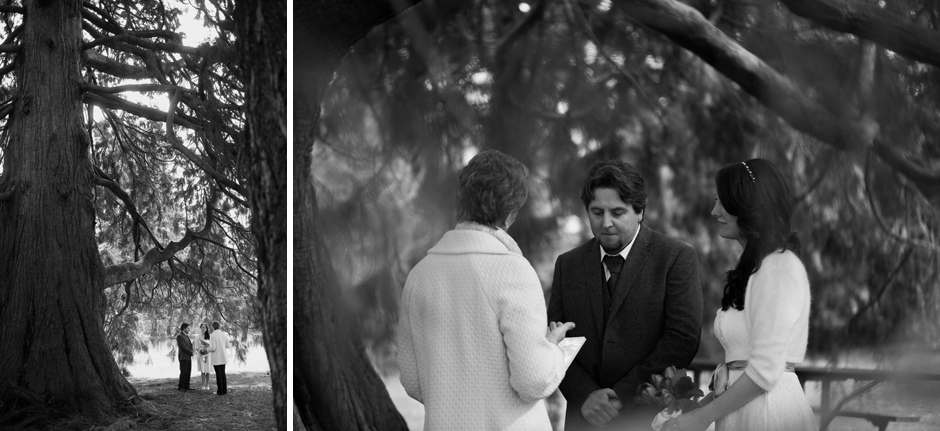 volunteer park elopement by jenny gg 014