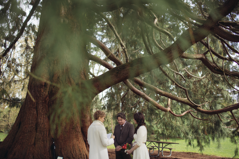 volunteer park elopement by jenny gg 016