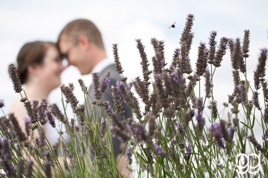 rosehill_wedding 010