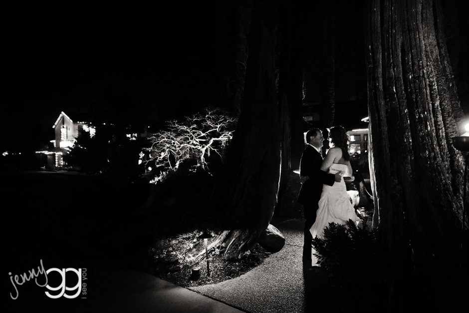 bride and groom in tree at willows lodge