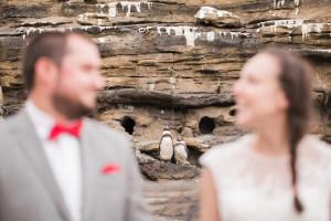zoo wedding at woodland park by jenny gg