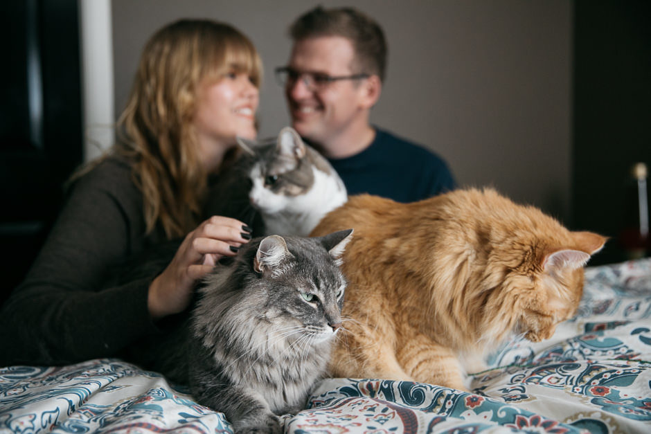 engagement photos with cats